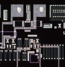 darkfield image